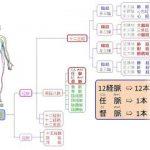 自律神経を整える経絡と鍼灸 経絡図の読み方